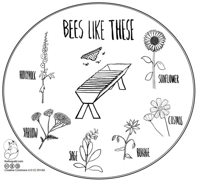 bees-like-these-poster